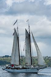 Schooner Kia Ora sailing along Foss Waterway, Tacoma